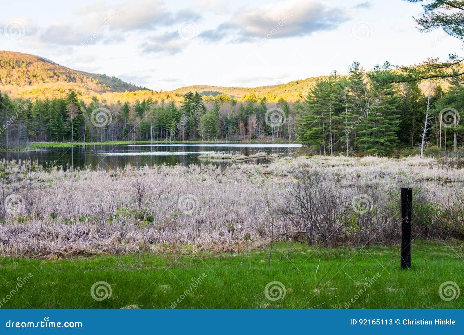 Stagno indiano in signora Sherri Forest in New Hampshire