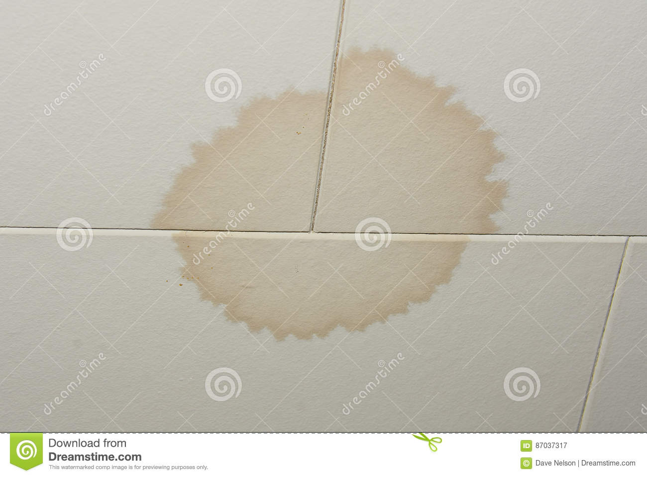 Water Leak From Roof stain on ceiling from water leak stock photo - image: 87037317
