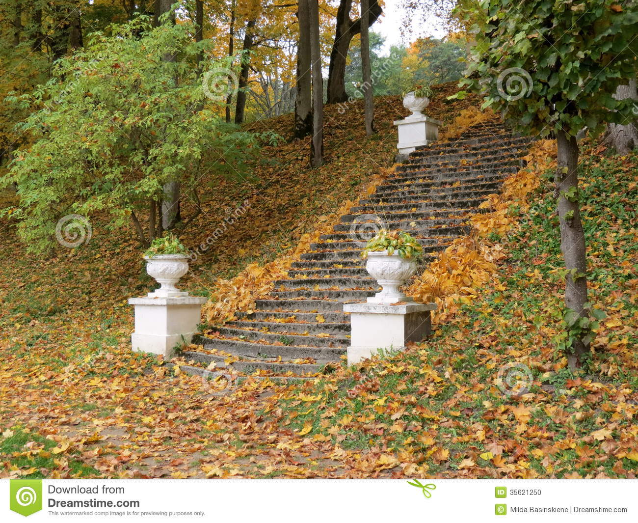 Stair in park