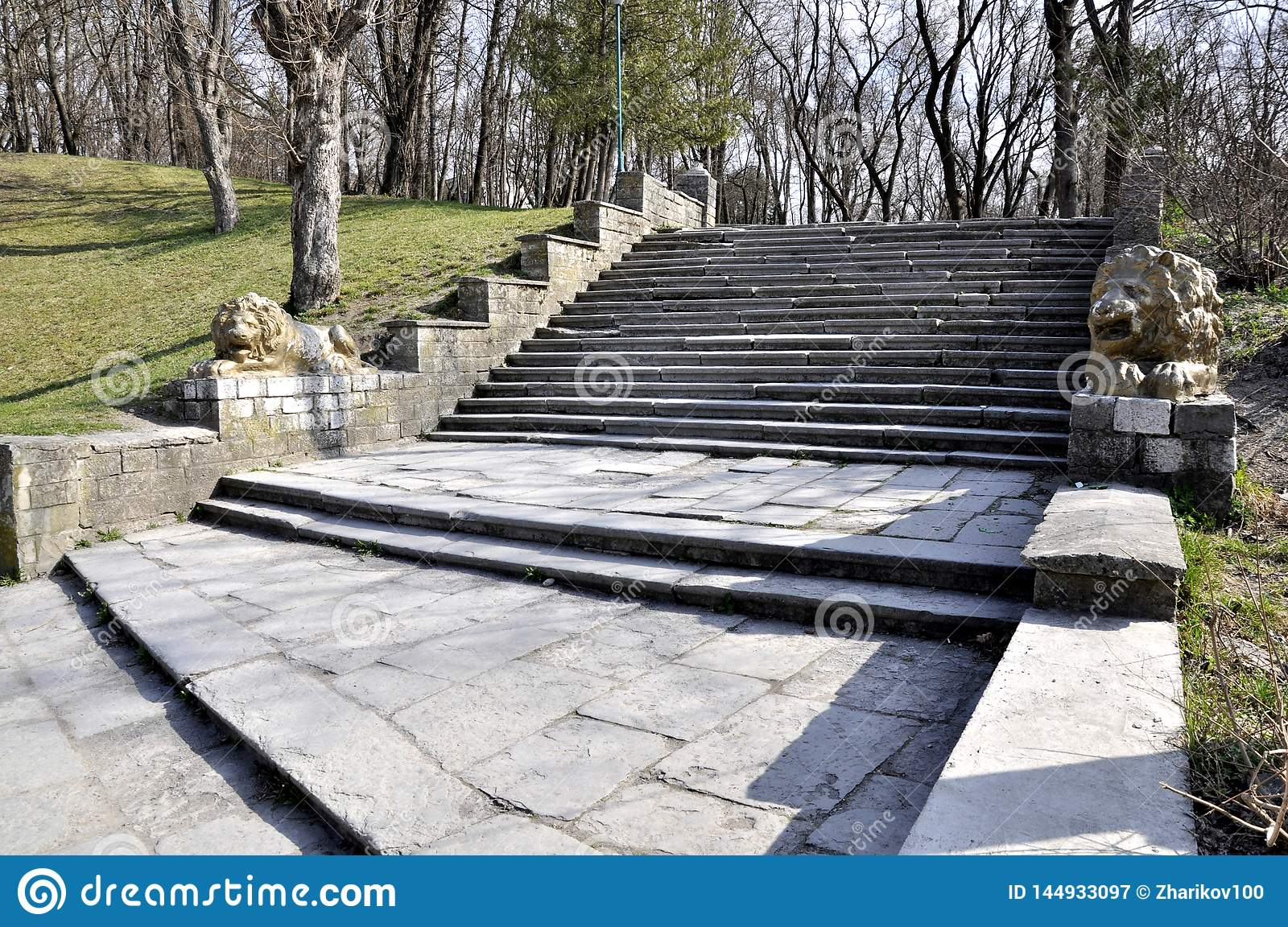 Staircase in the park