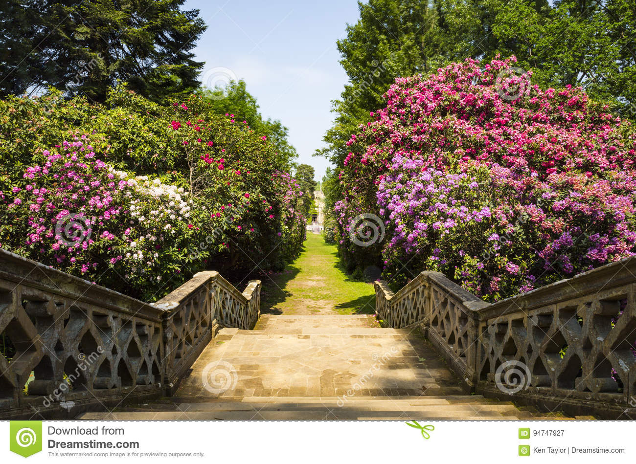 Stairs in Hever Gardens stock image. Image of green, park - 94747927