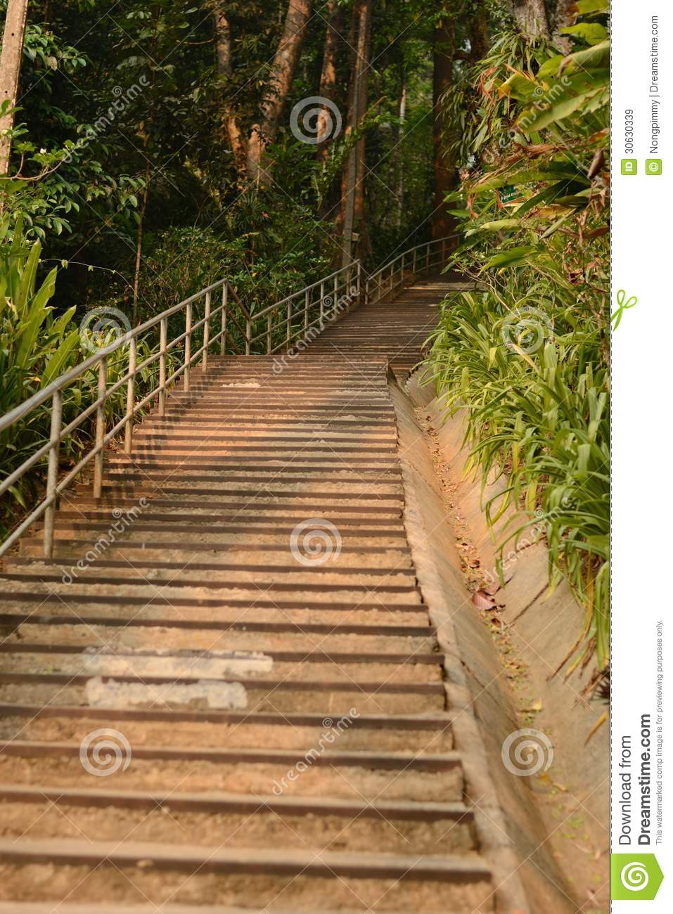 Stairs to the mountain