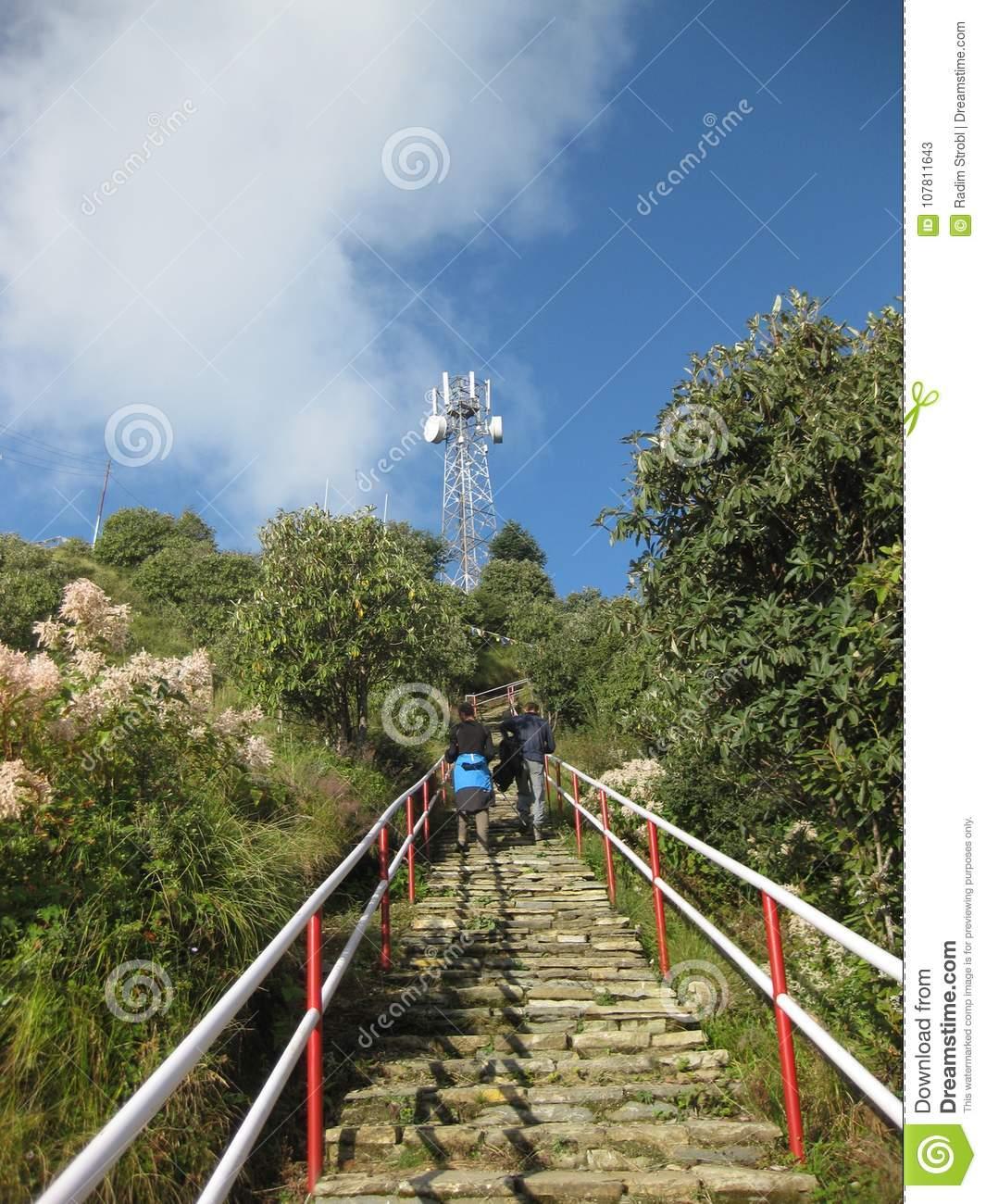 Stairs to Poon Hill, Nepal