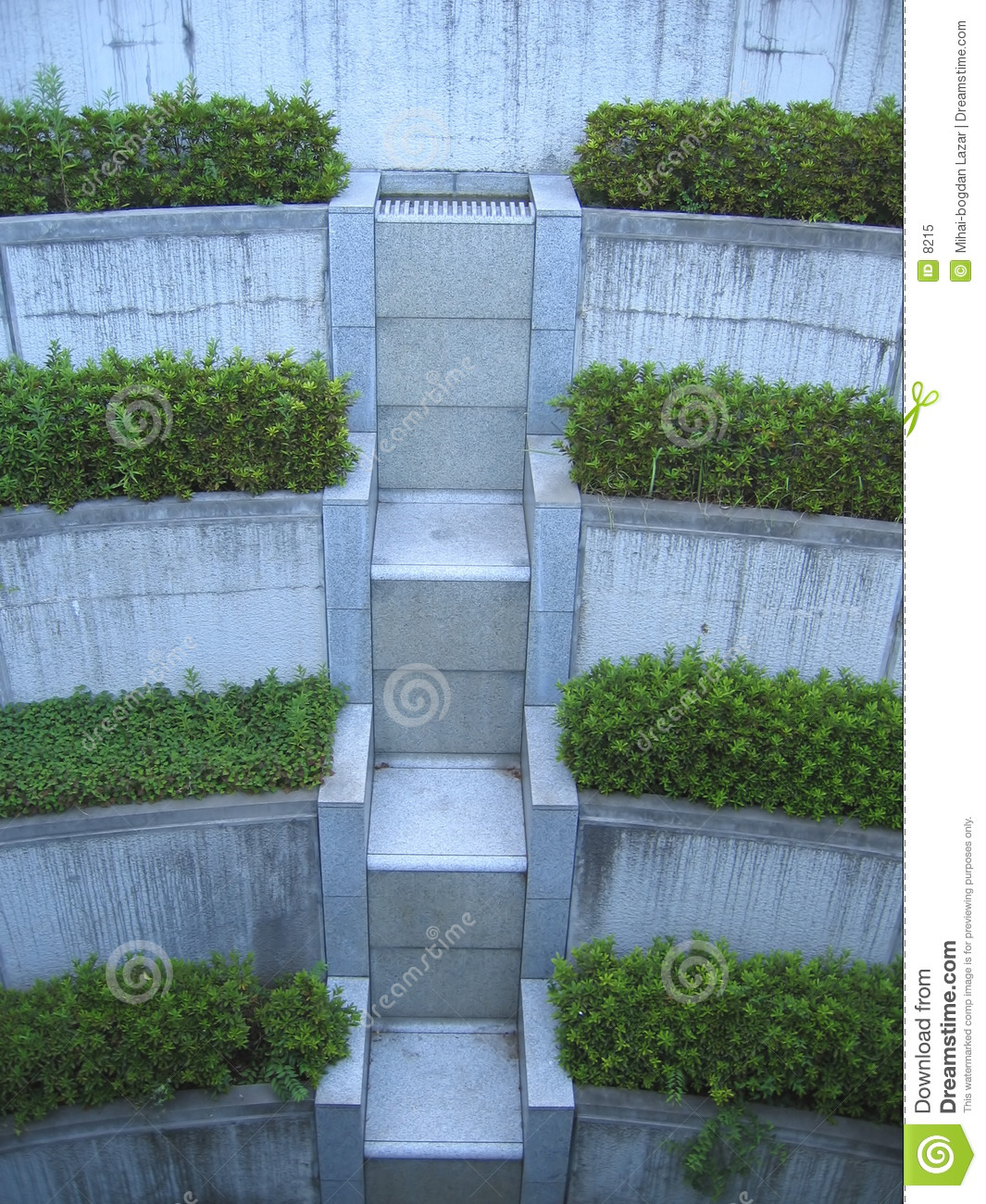 Stairs of Vegetation