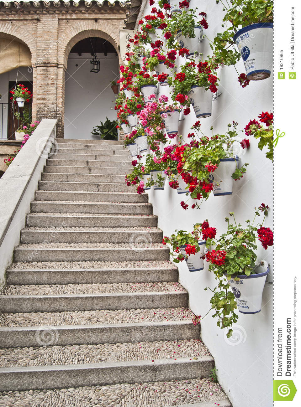 Stairs whith geraniums royalty free stock photo image 19210865 - Care geraniums flourishing balcony porch ...
