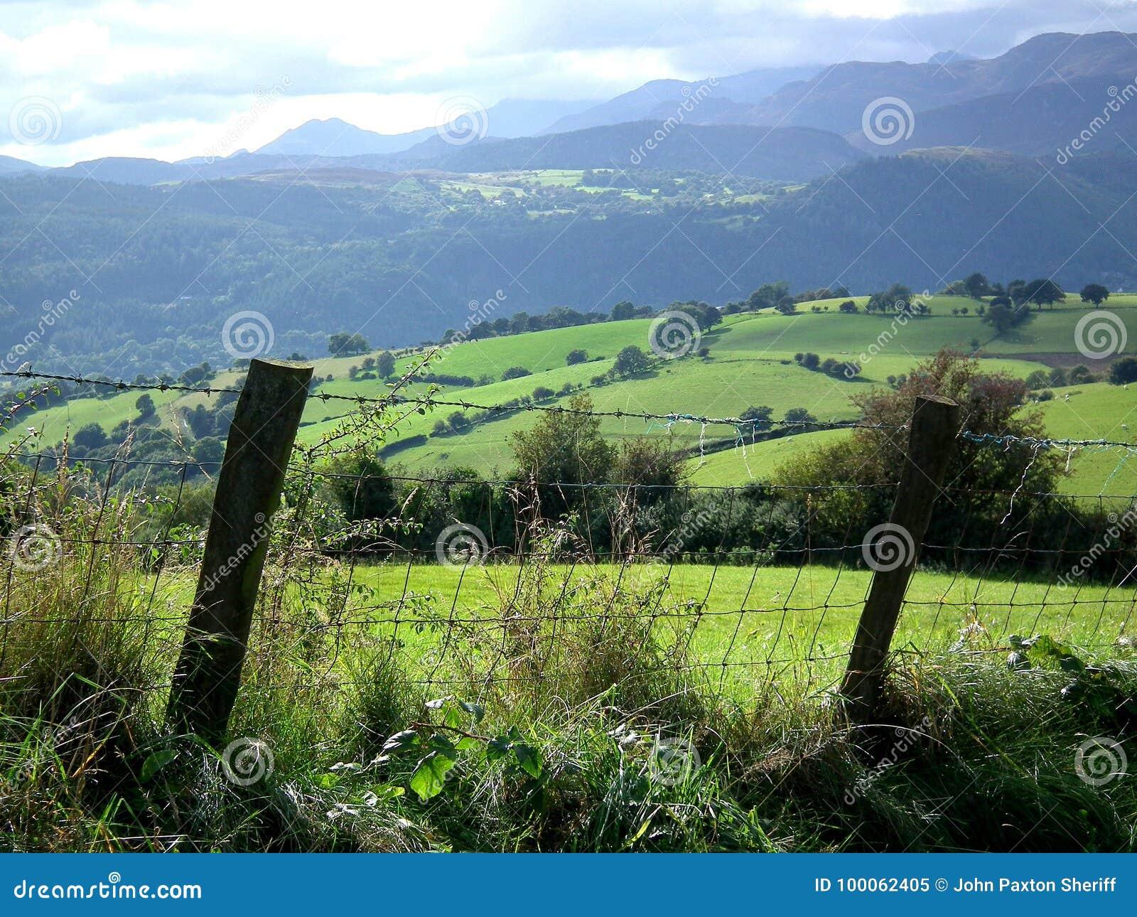 Staket, fält och kullar