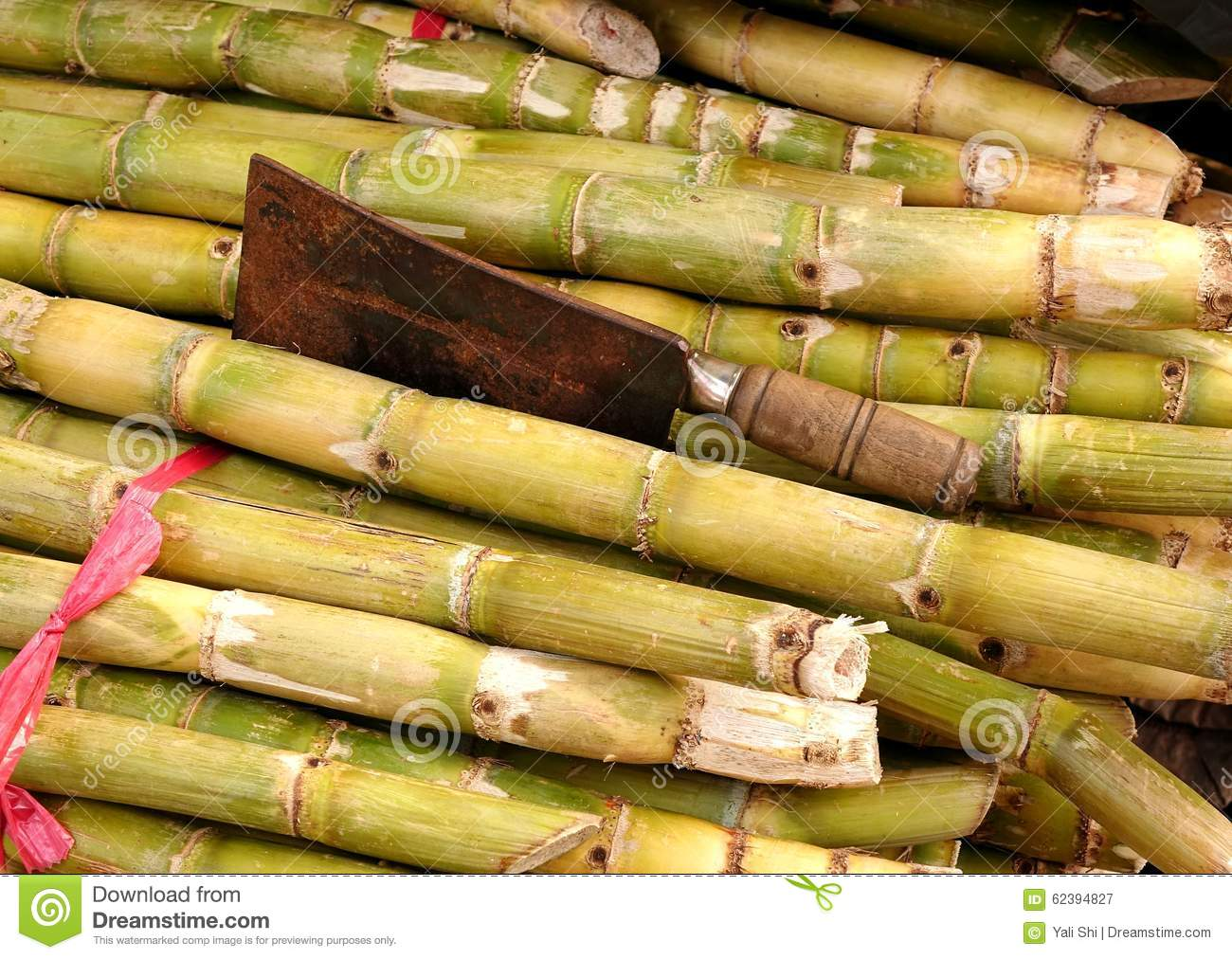 Sugar Cane Pictures, Images and Stock Photos - iStock |Sugar Cane Stalks