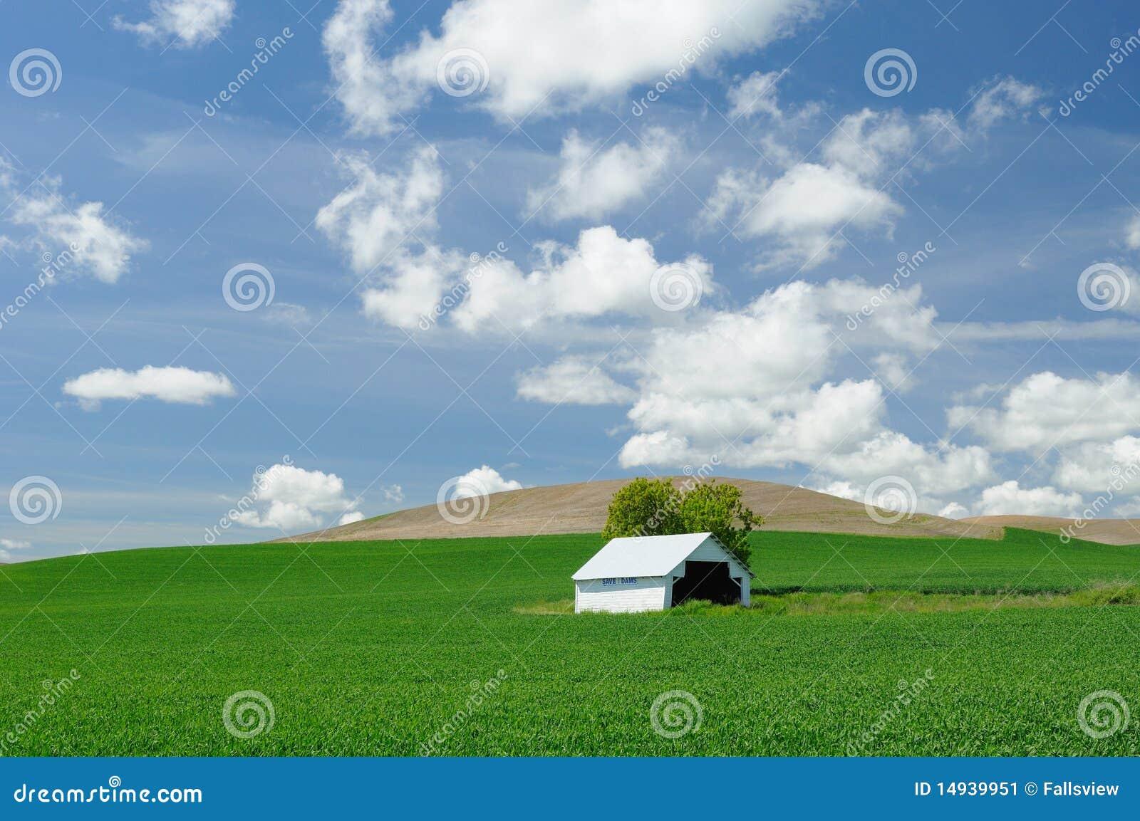 Stall auf dem Weizengebiet