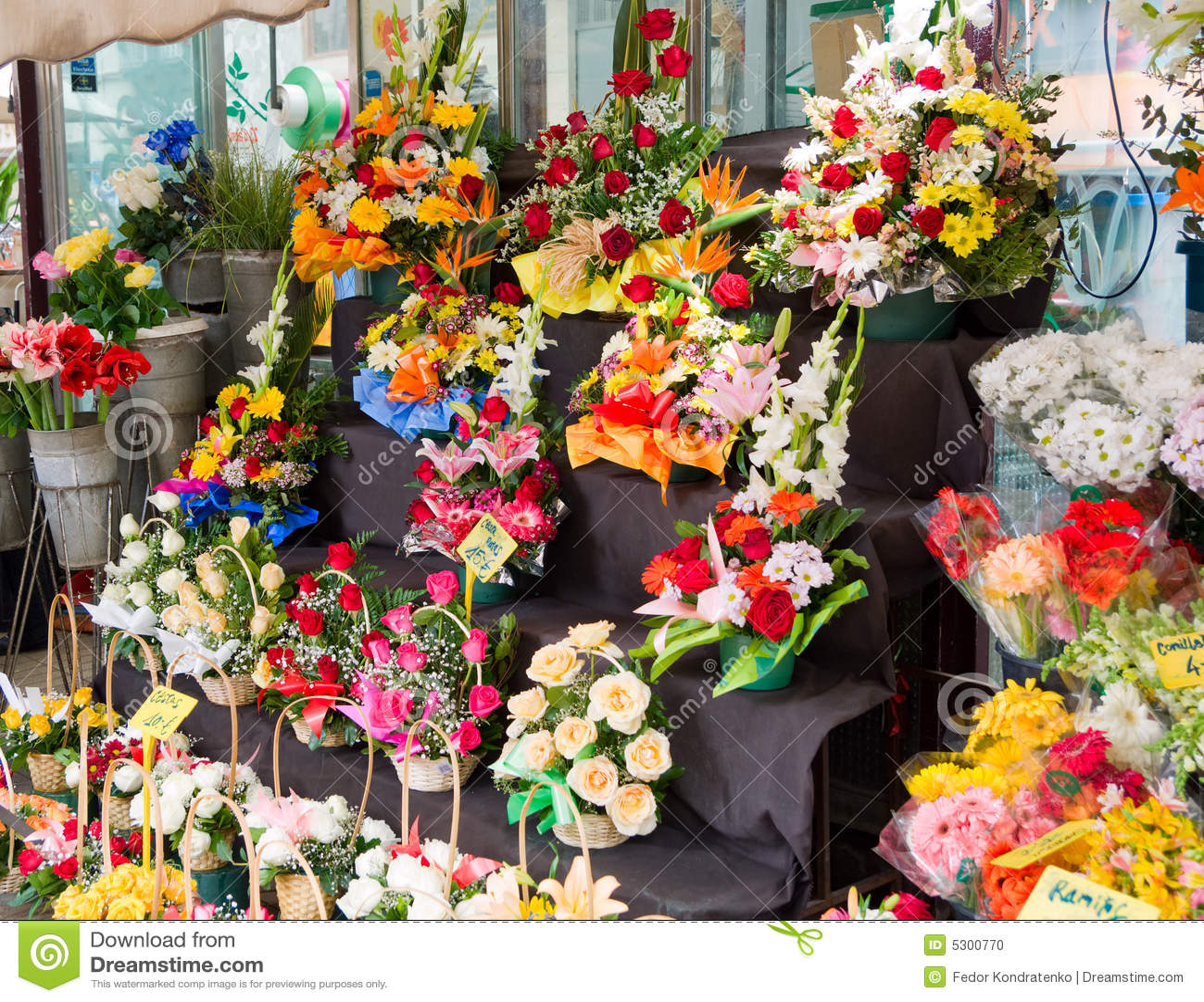 Download Stalla del fiore fotografia stock. Immagine di aroma, chic - 5300770