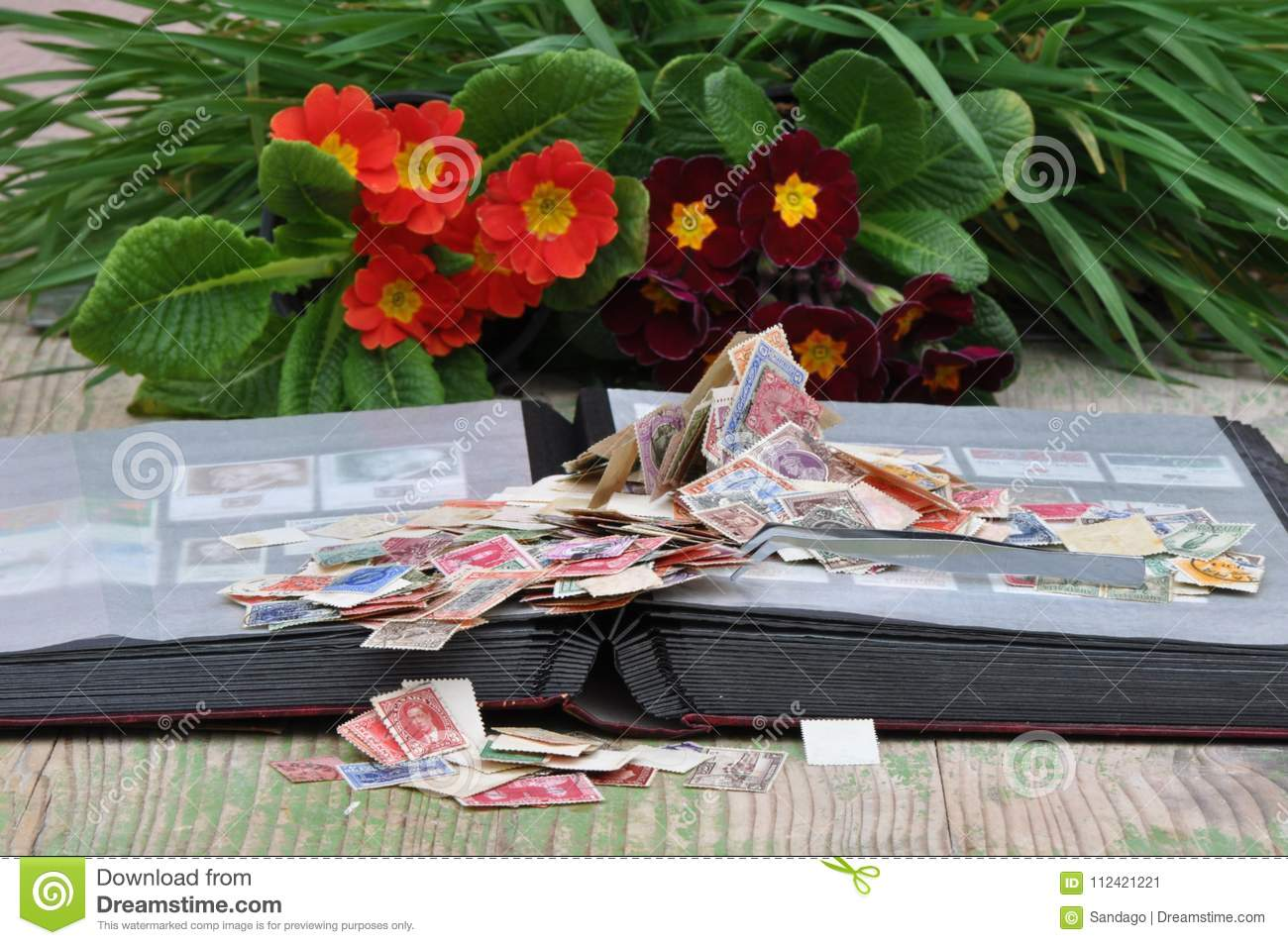 Stamp album with pile of stamps