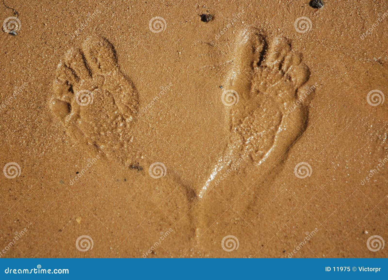 Stampe del piede