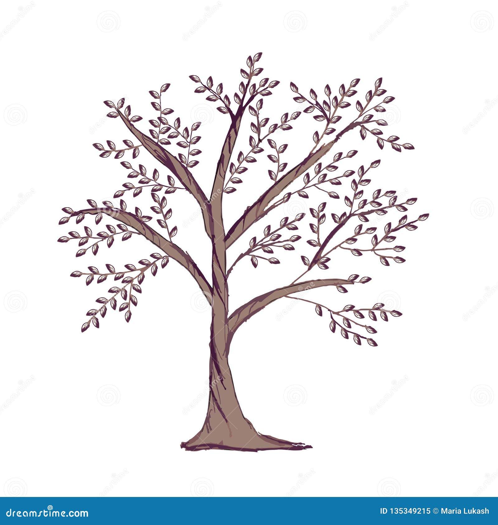 Stamträdmall som isoleras på vit bakgrund För trädkontur för hand utdragen logo