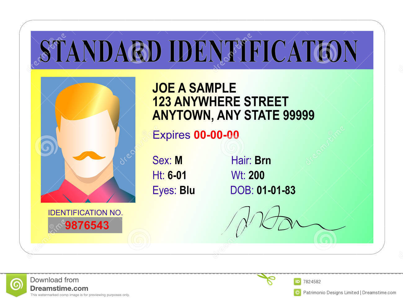 introducing identification cards in britain essay