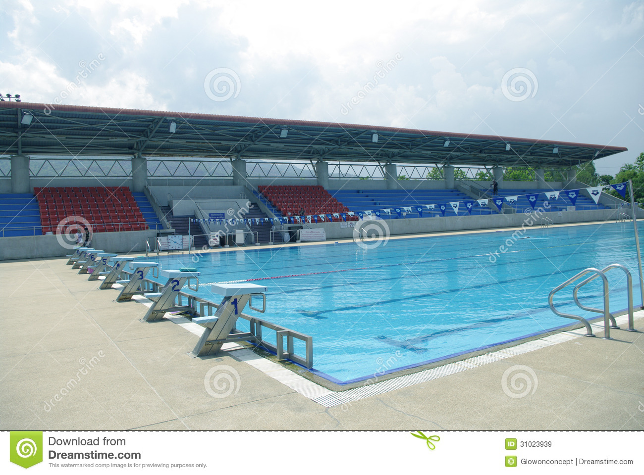 Standard outdoor swimming pool royalty free stock images image 31023939 for Standard swimming pool size uk