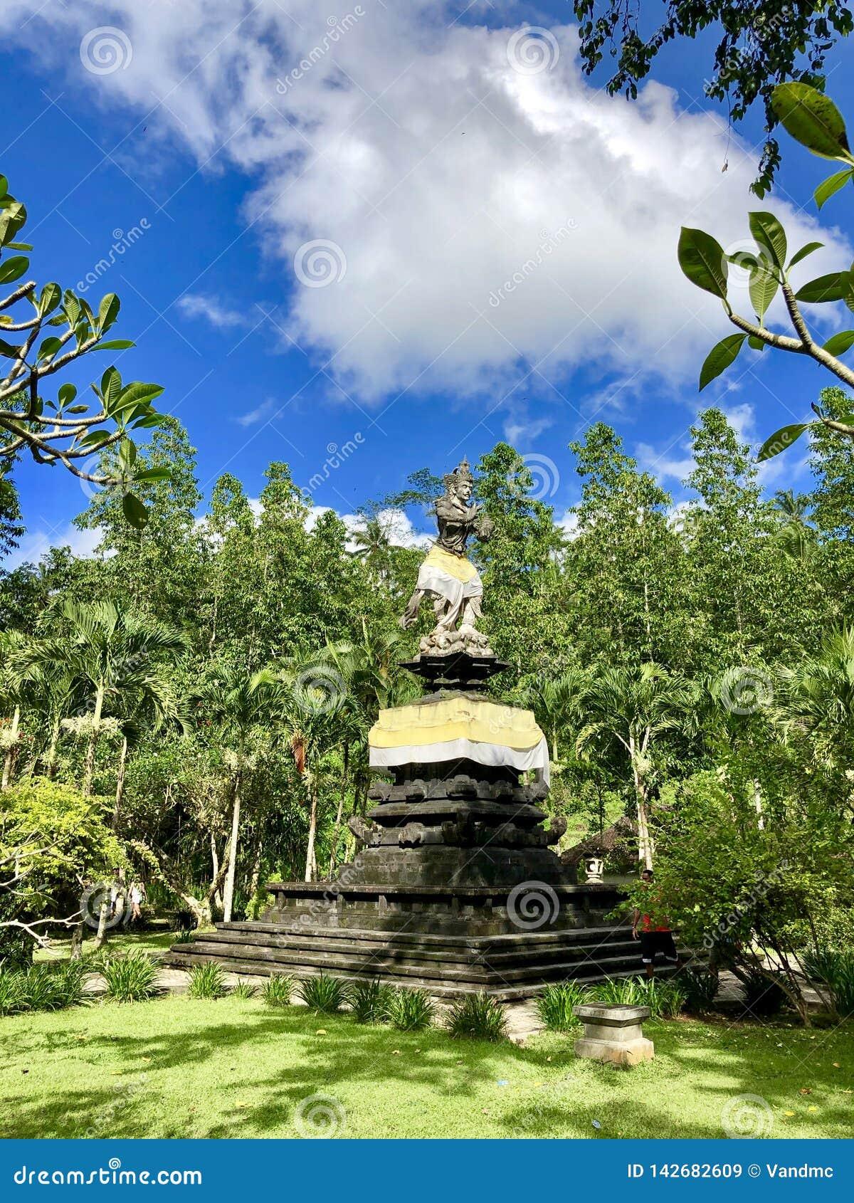 Standbeeld in de regenwoudfoto