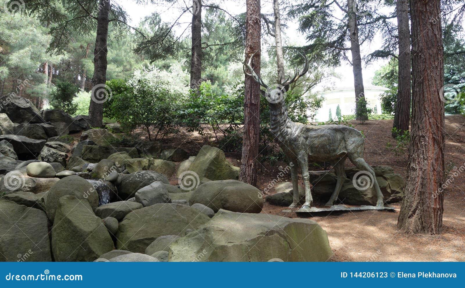 Standbeeld van een hert in het hout dichtbij de rotsen en de Kreek Aivazovskypark