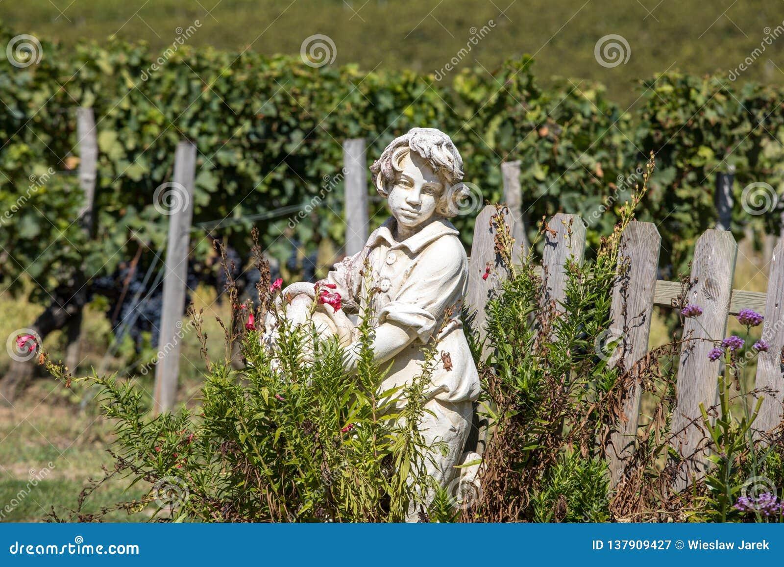 Standbeeld van een jongen die een mand met druiven op de achtergrond van wijngaarden in het Saint Emilion-gebied houden