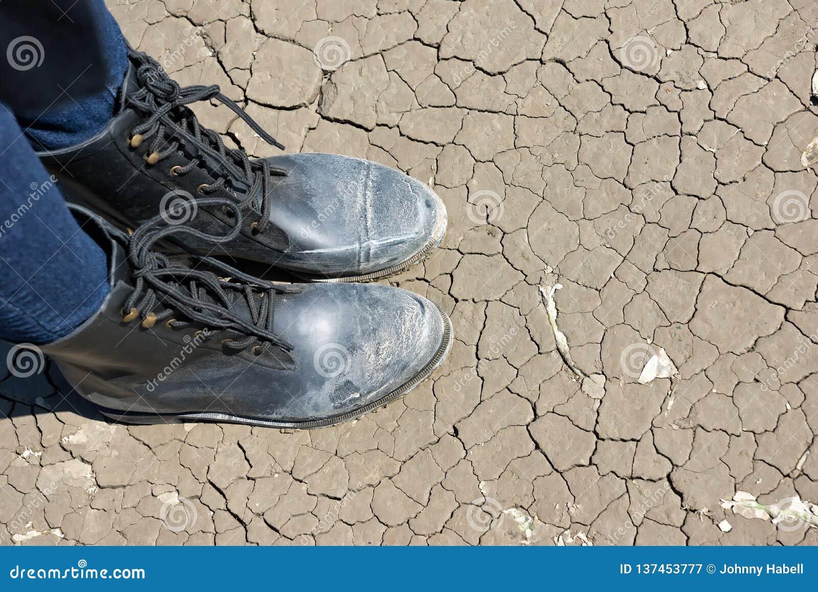 Stando sulle crepe a terra su una terra coltivata asciutta