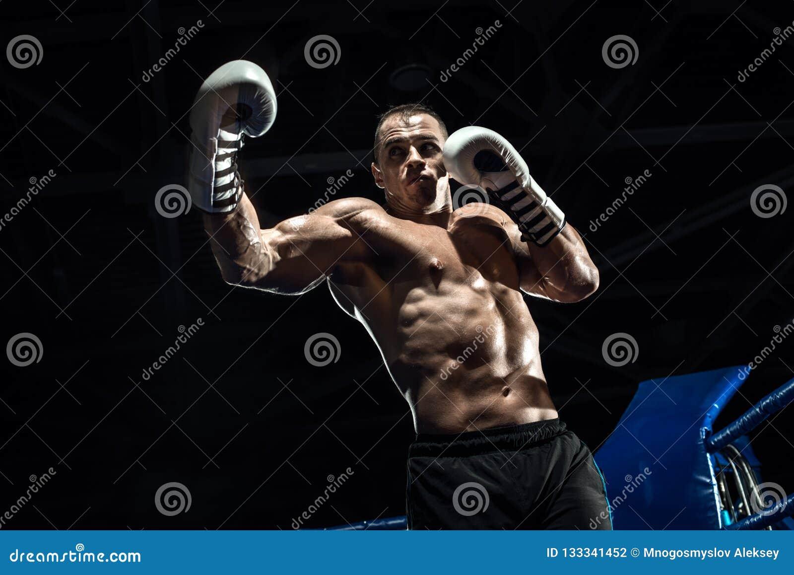 Stansa boxaren på boxningsringen