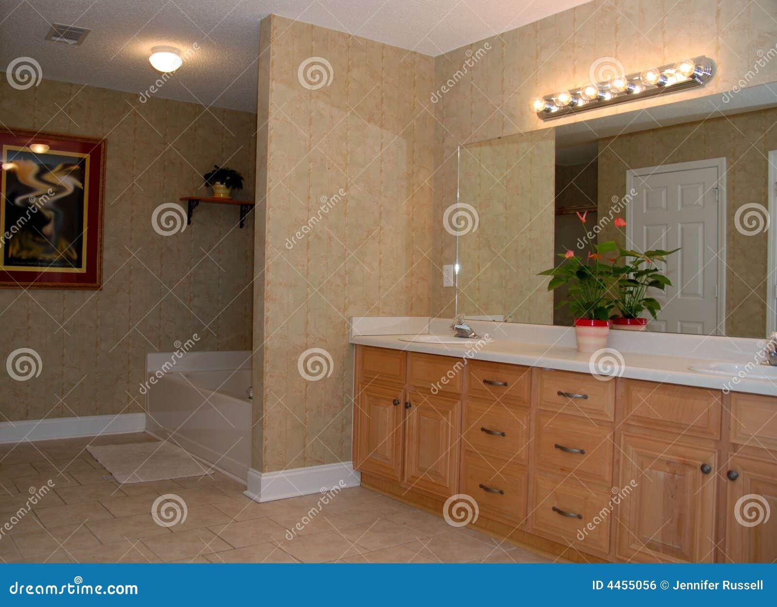Stanza da bagno elegante fotografia stock immagine di domestico 4455056 - Stanza da bagno ...