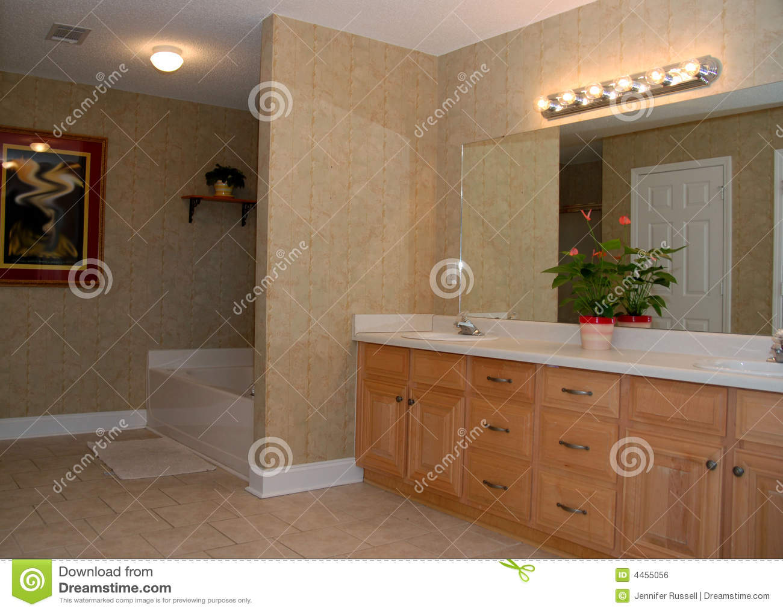 Stanza Da Bagno Elegante Immagine Stock Libera da Diritti - Immagine: 4455056