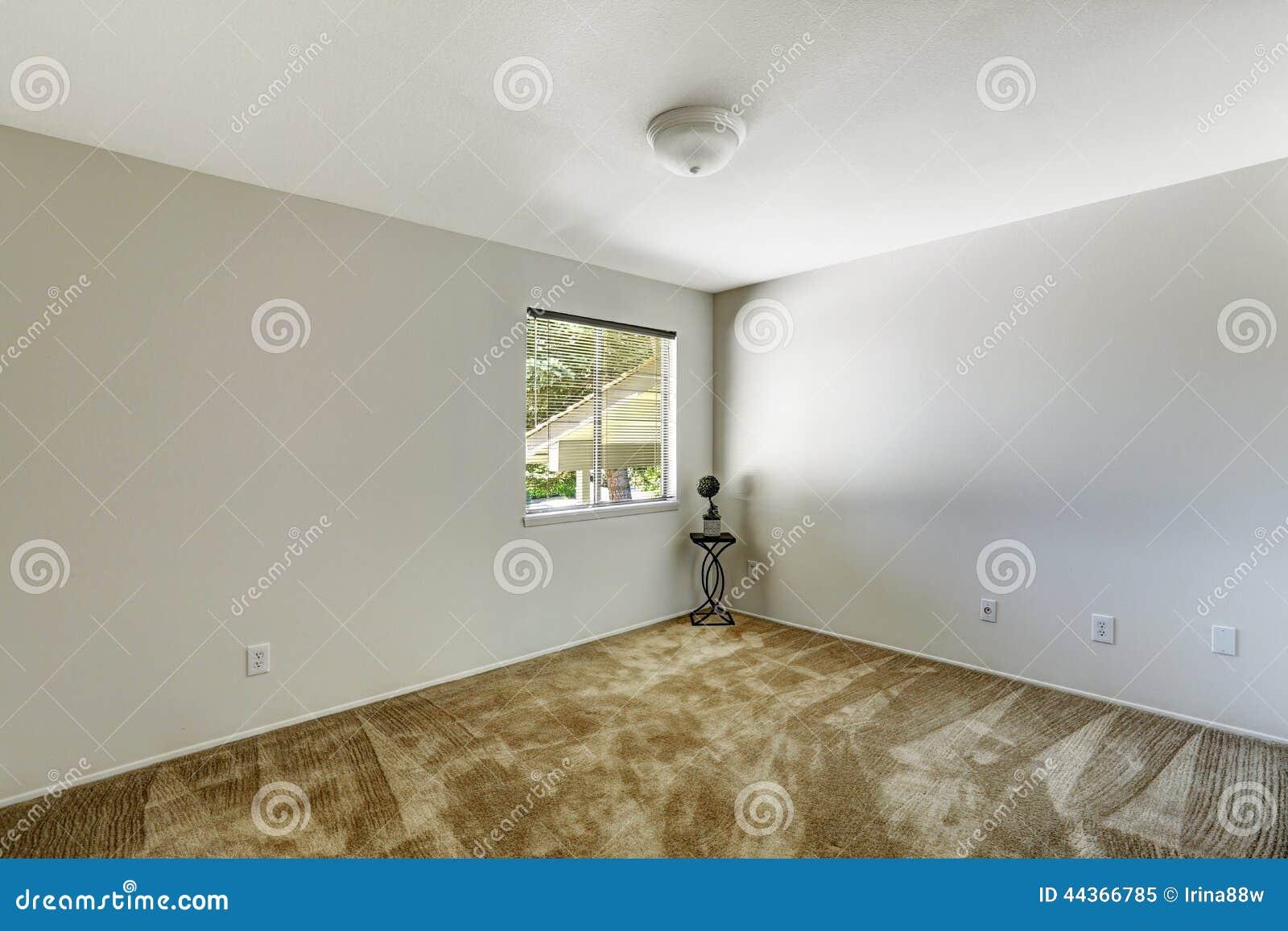 Stanza di Emtpy con il pavimento di tappeto marrone molle