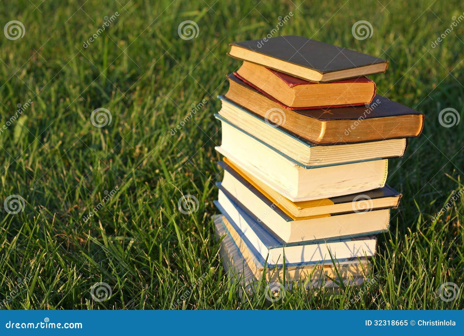 Stapel Boeken in het Gras
