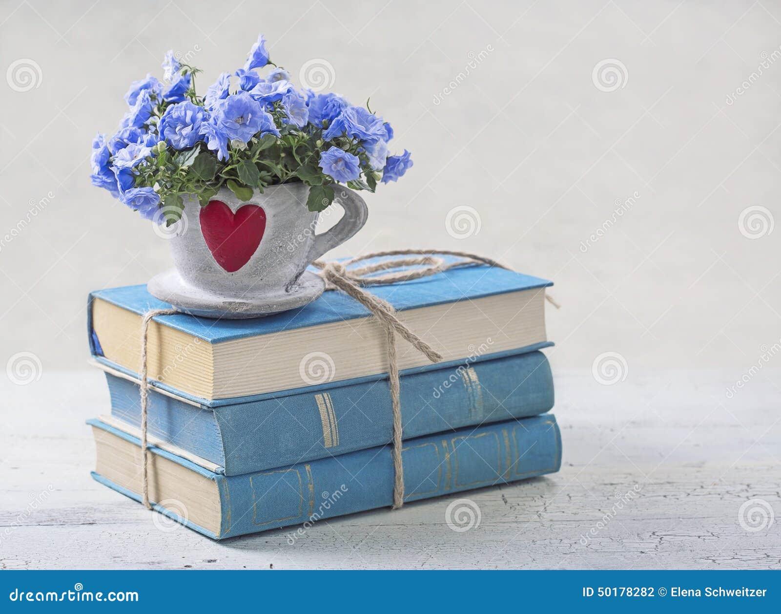Stapel der blauen Bücher