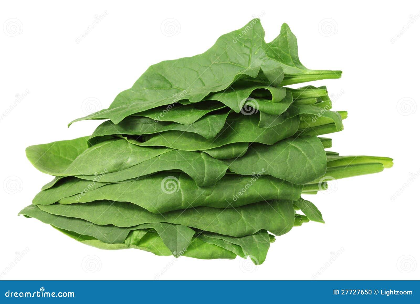 Stapel der Spinat-Blätter