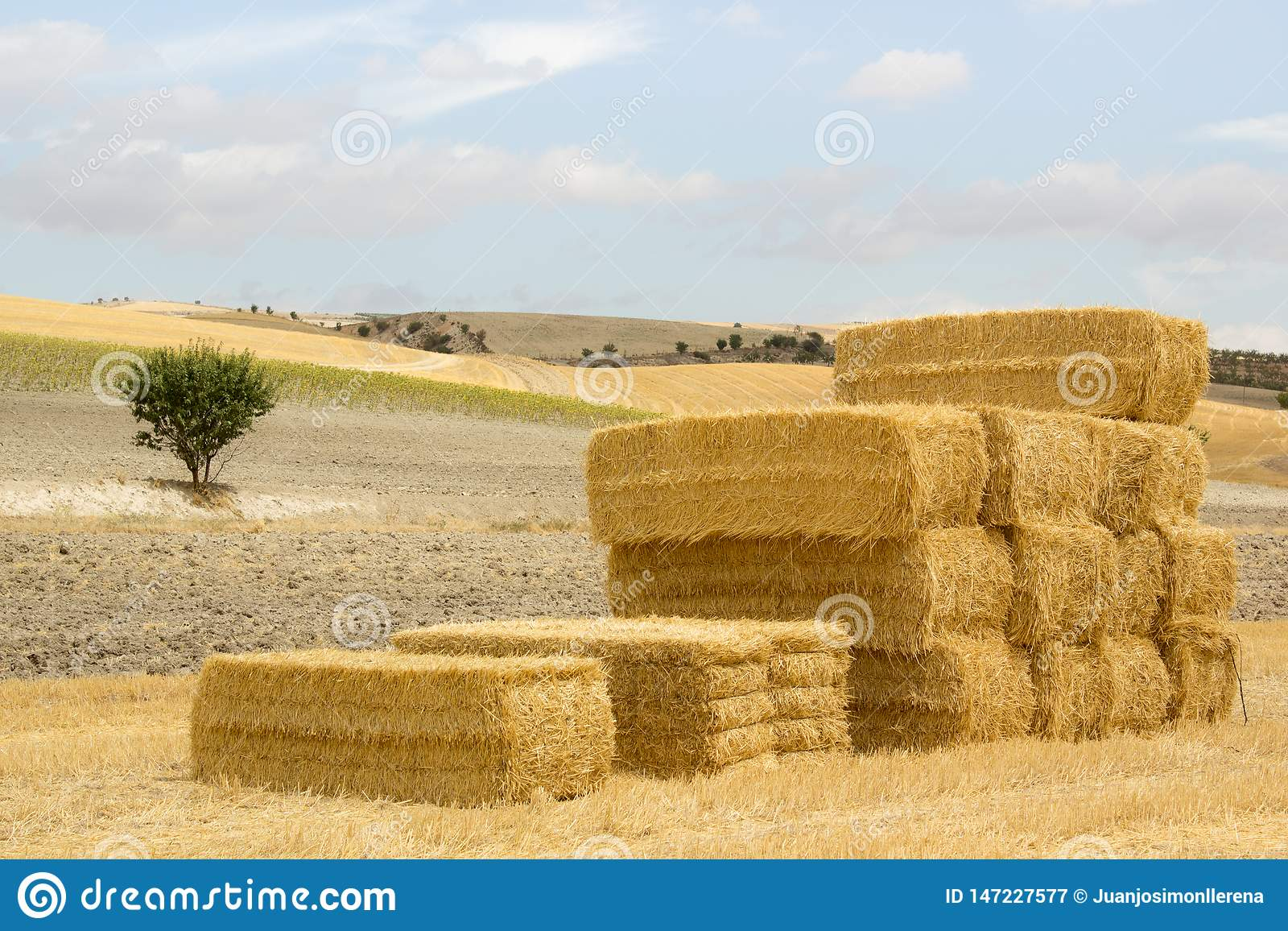 Stapel strobalen in een zonnig landschap
