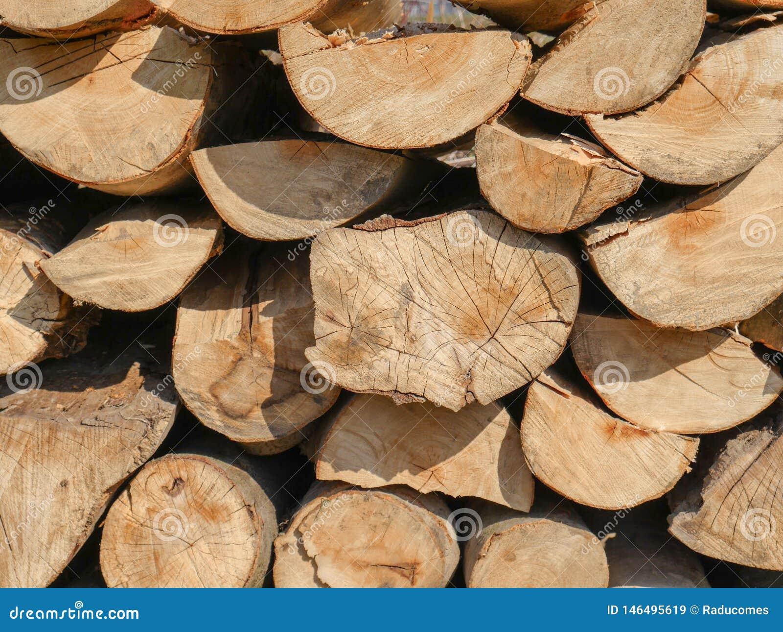 Stapel van brandhout die in een muur wordt gestapeld
