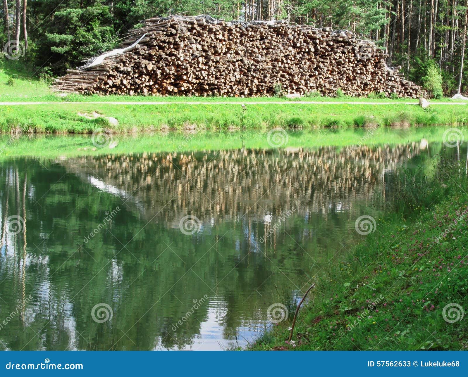 Stapel van brandhout voor een klein bergmeer Woodpile wordt overdacht het meer Fie scilliar allo, Zuid-Tirol, Italië