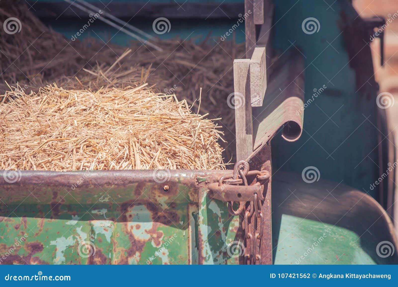 Stapel van droog stro op vrachtwagen met zonlicht bij platteland in uitstekende stijl