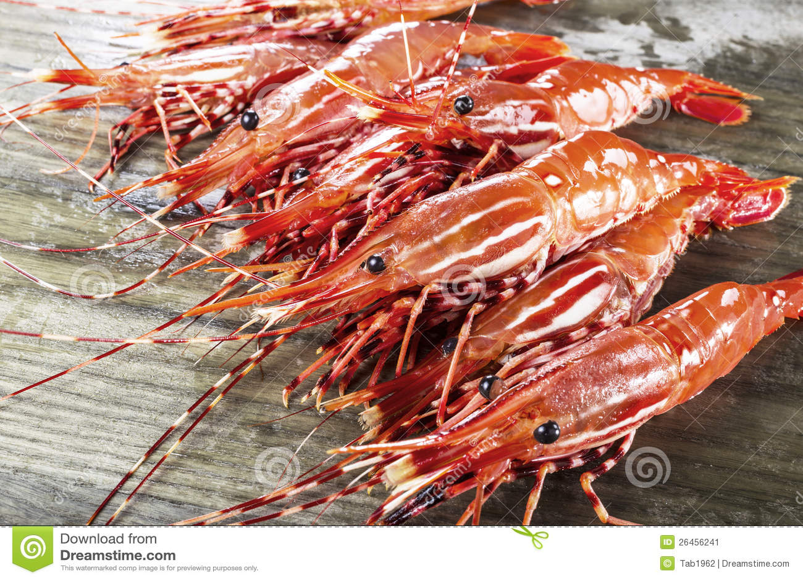 Stapel van levende garnalen bij de visserij van dok stock afbeelding