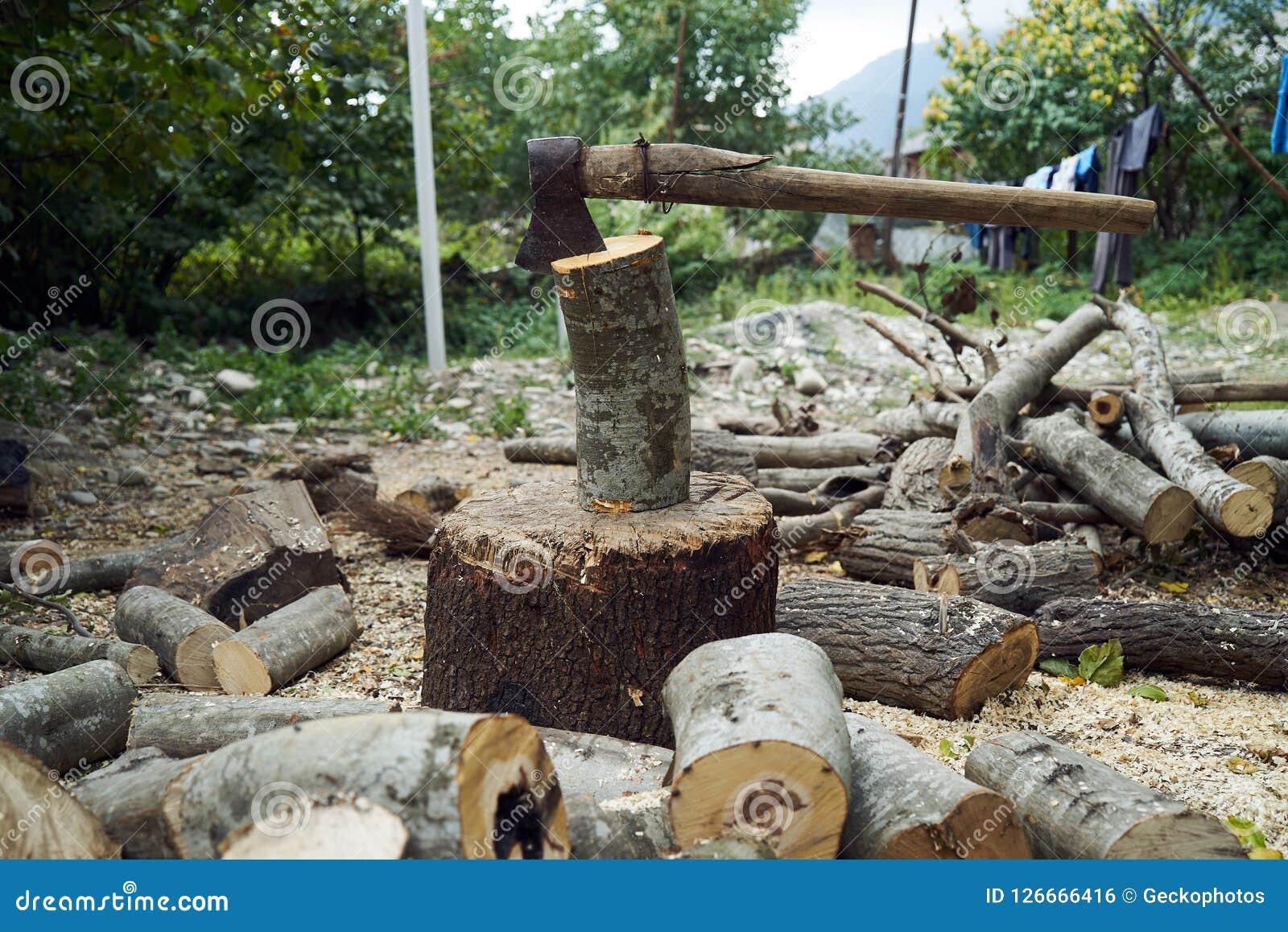 Stapels van brandhout in het bos, close-up