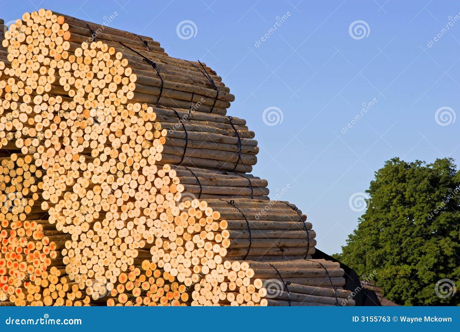 Stapels van hout bij een zaagmolen