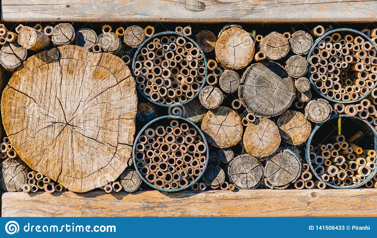 Stapels van houten die boomstammen omhoog in verschillende grootte worden gesneden