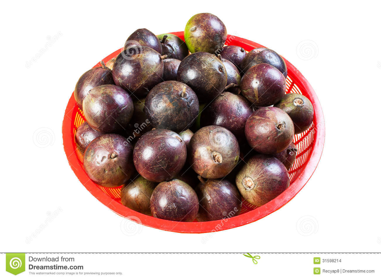 Star Apple Fruit It Comes With Green Or Purple Color Stock ...