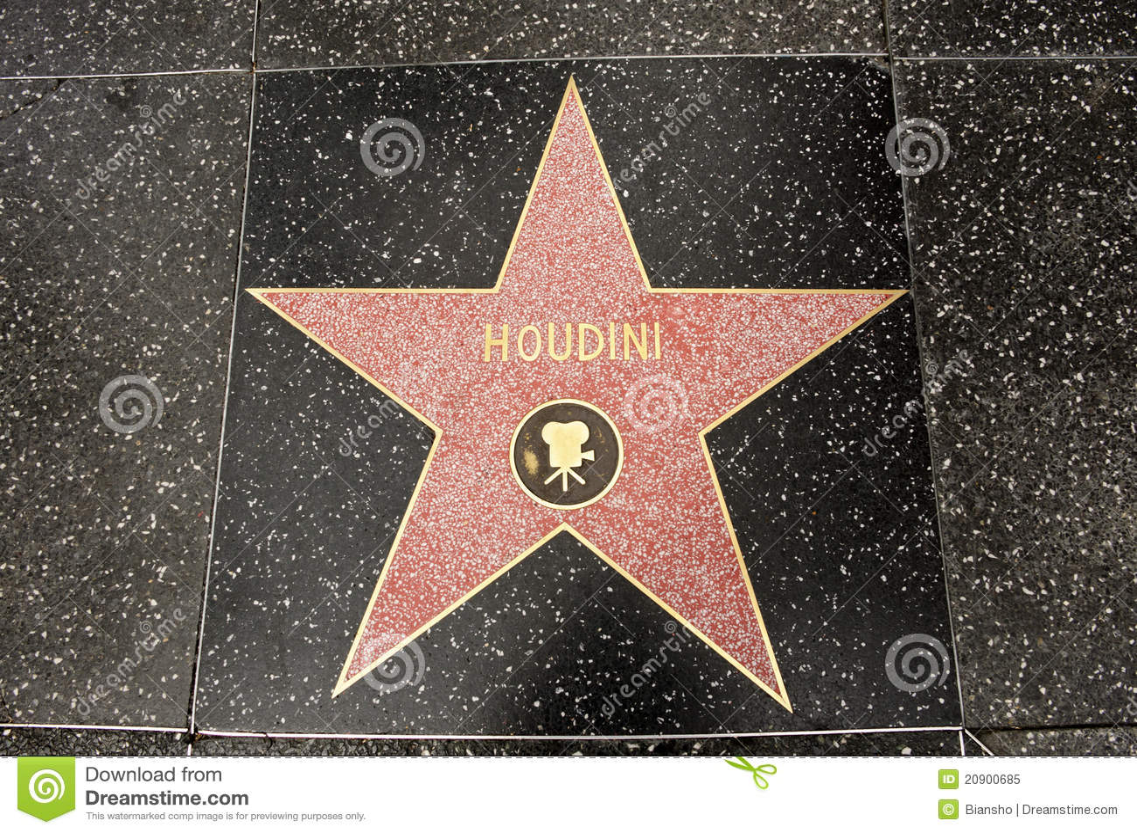 The star of Harry Houdini