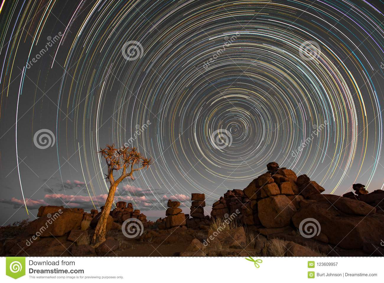 Star trails circle over quivertrees