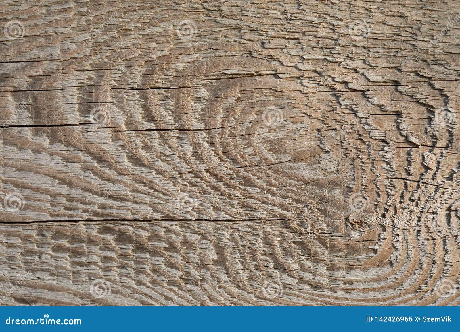 Stara Drewniana deski tekstura na Pociemniałym słońcu