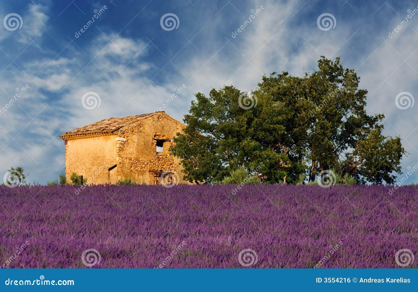 Stara stodoła Provence