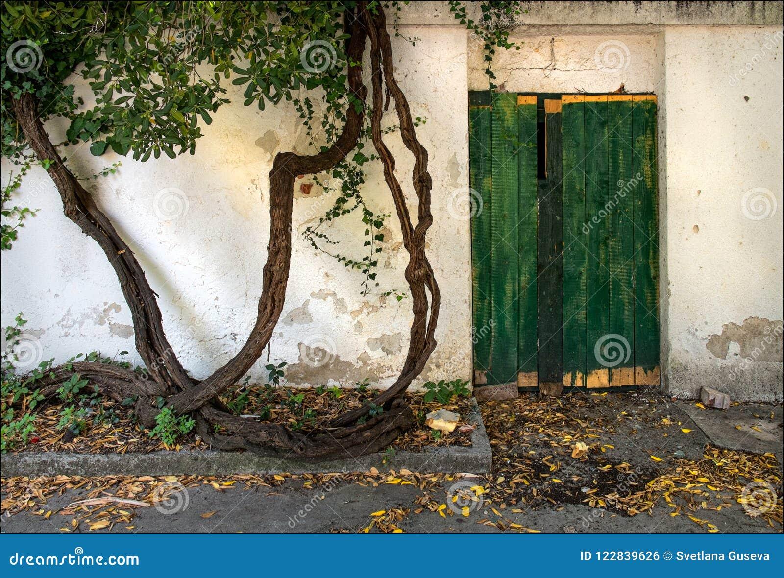 Stare drzwi Ulicy Dubrovnik Chorwacja