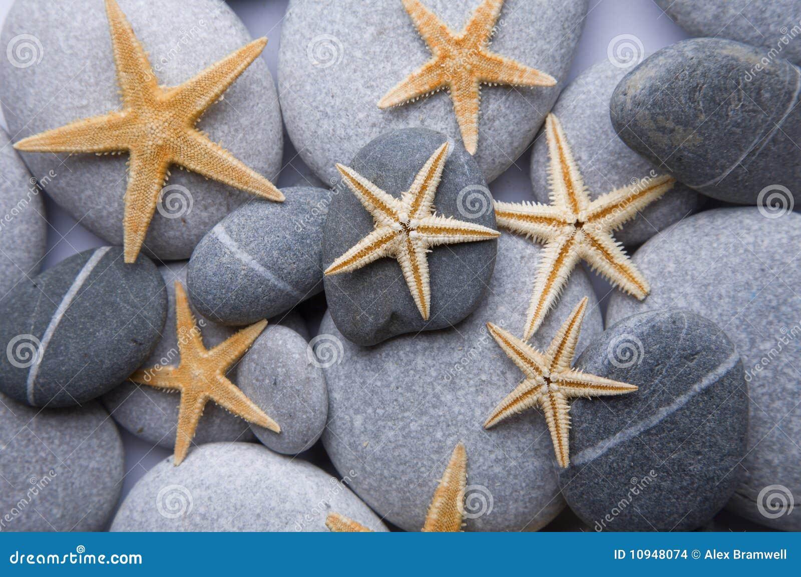 Starfish камушка предпосылки