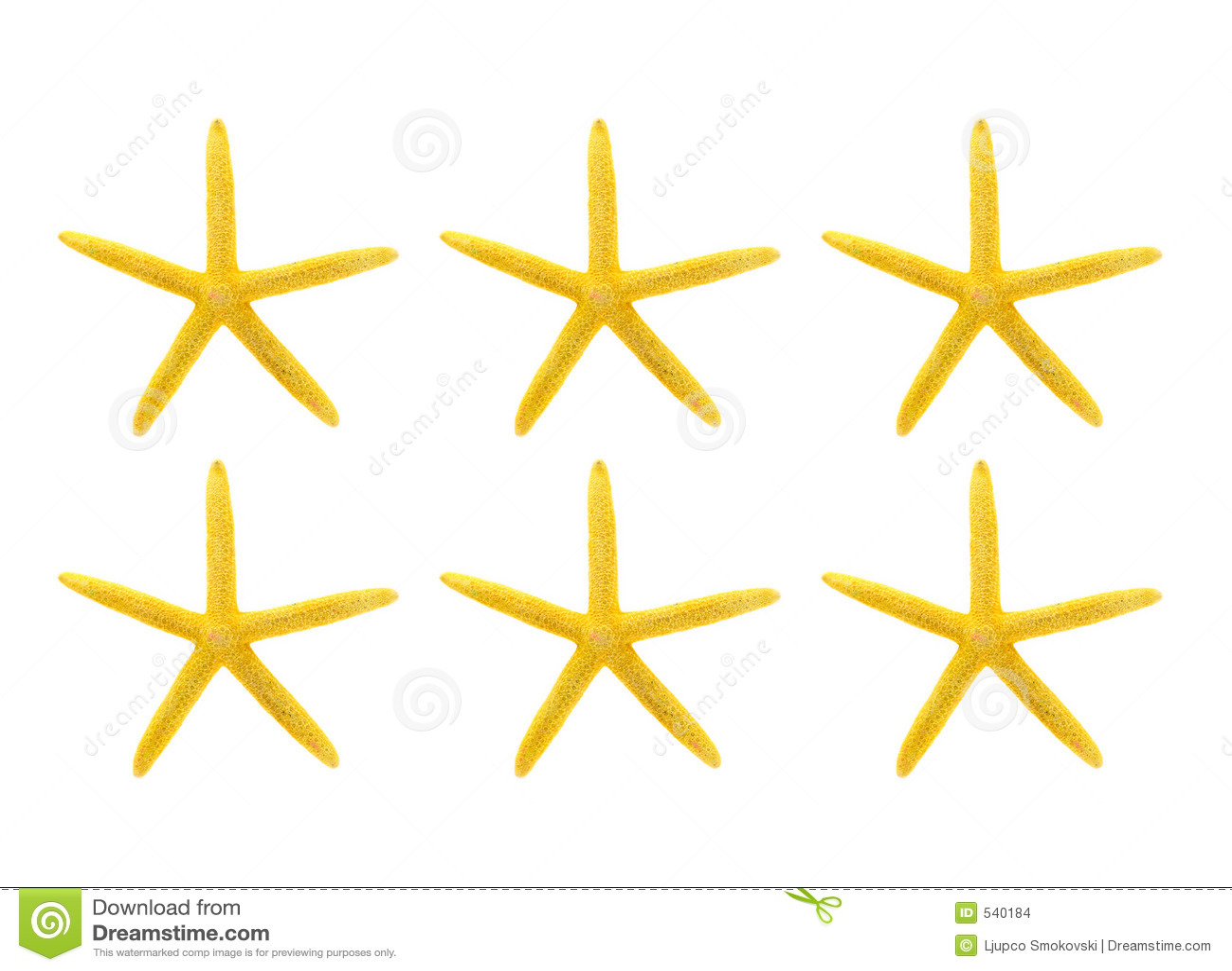 Starfish amarelos de encontro ao fundo branco