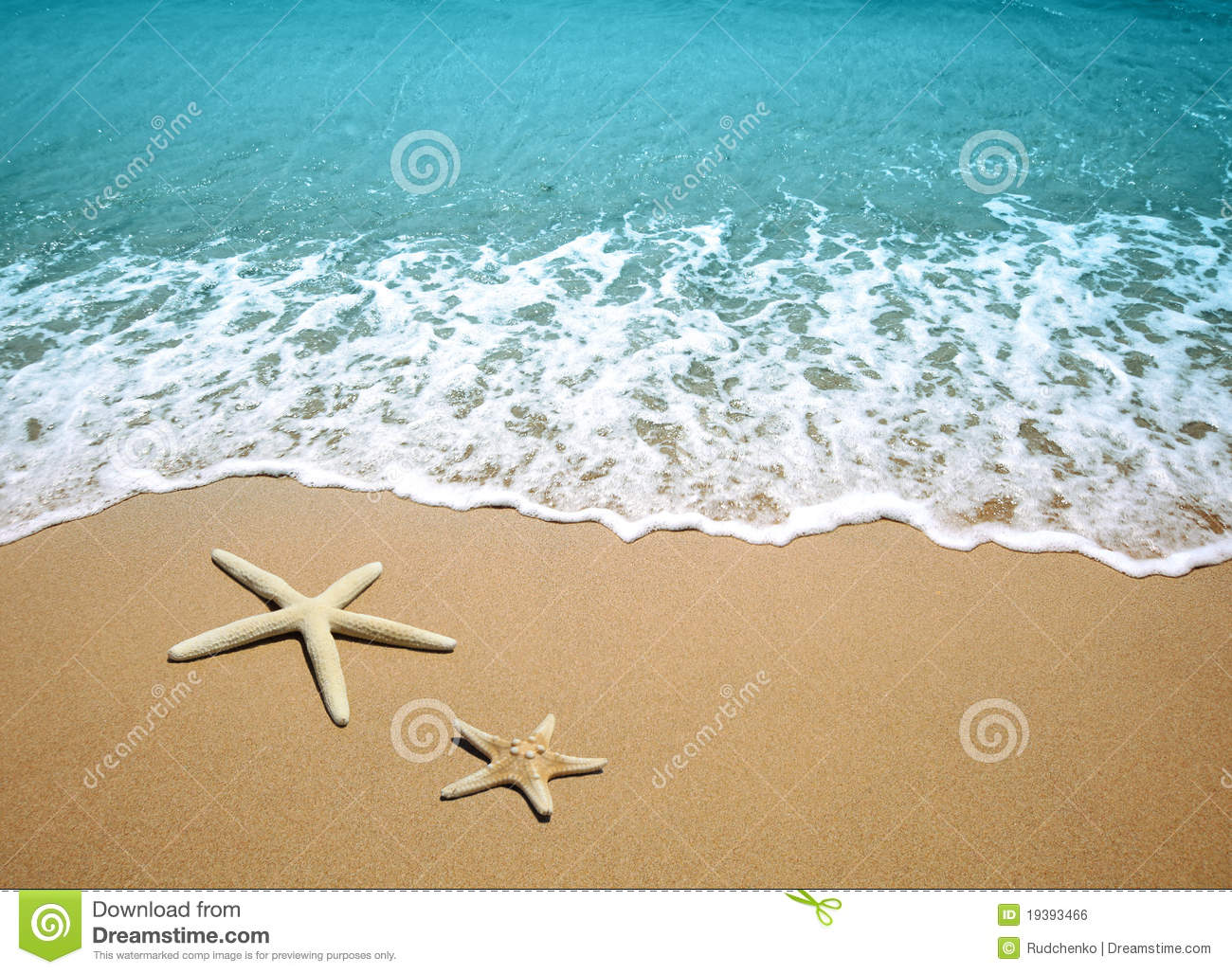 Starfish On A Beach Sand Stock Photo Image Of Vacation