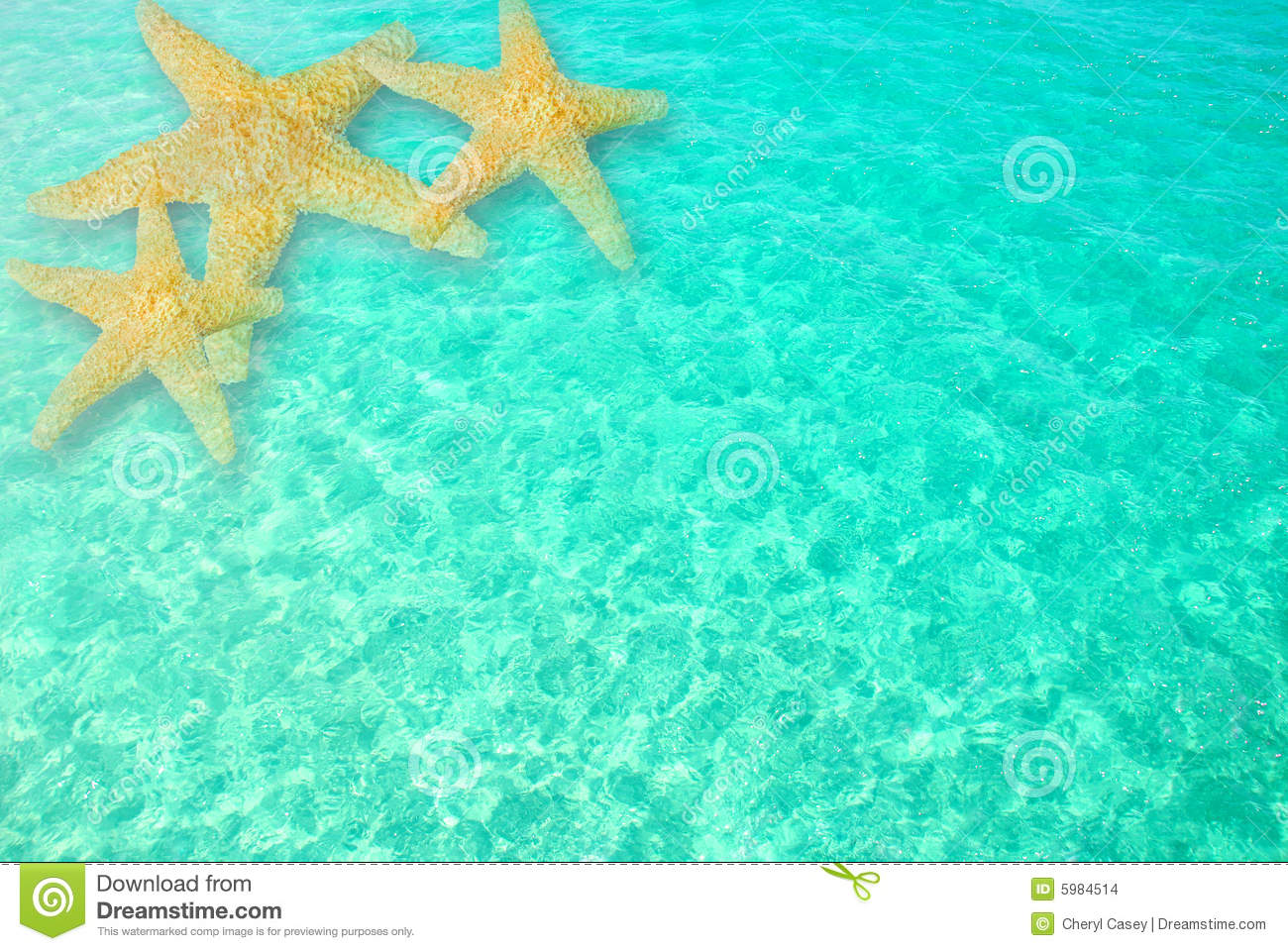 Starfish In Clear Ocean Water Stock Images Image 5984514