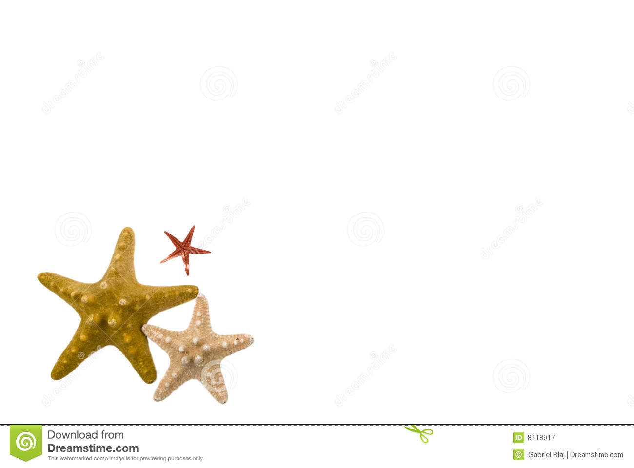 Starfish frame stock image. Image of image, objects, creative - 8118917