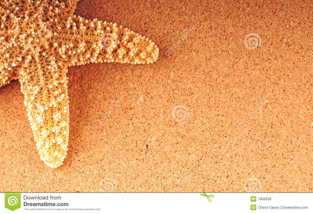 Starfish no fundo tan
