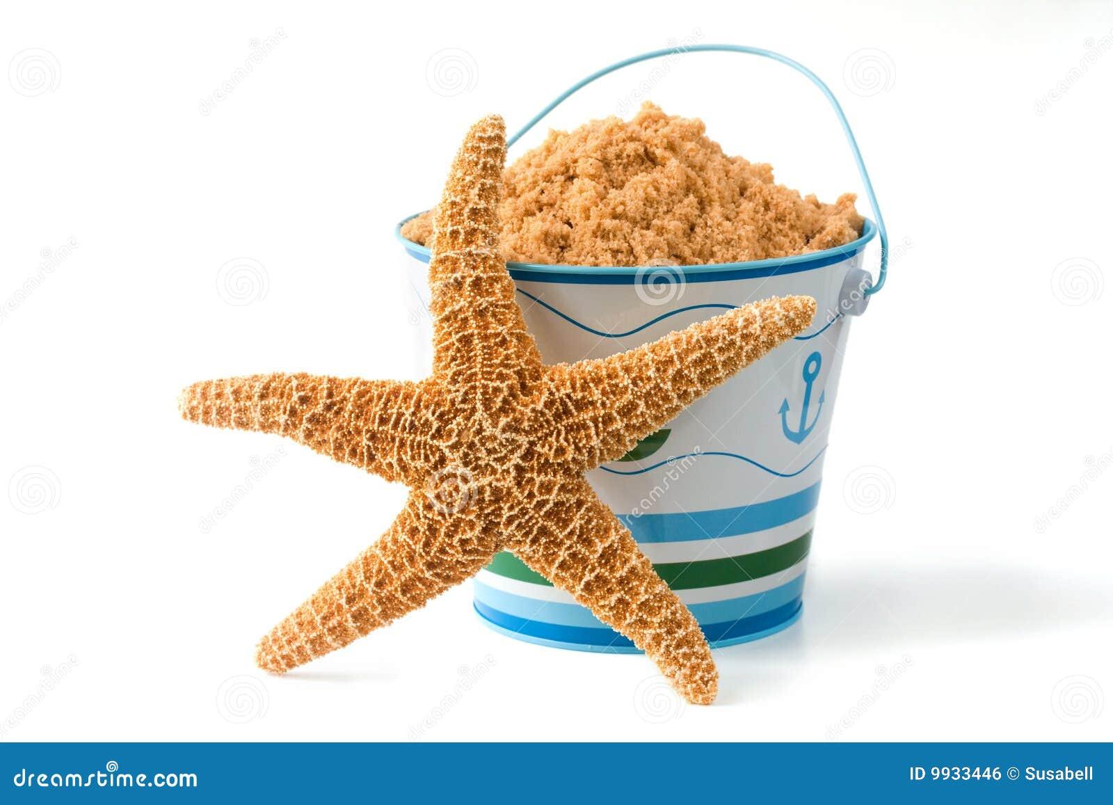 Starfish and pail